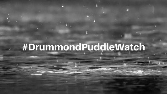 Puddle Watch